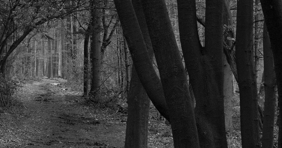 Snap vosselman buiten projecten photos on pinterest